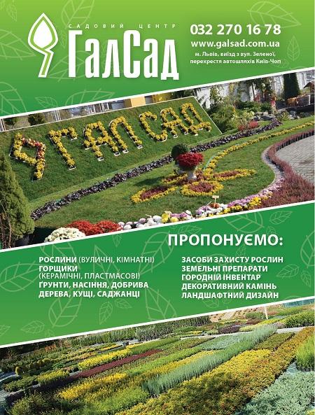 гал_сад