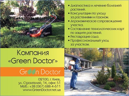 green_doctor1