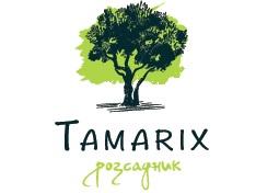 tamatix_logo