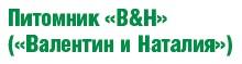 валентин_и_наталья_лого