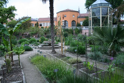 1_Ботанический сад Падуи2