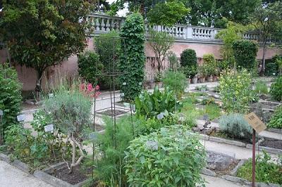 1_Ботанический сад Падуи_1