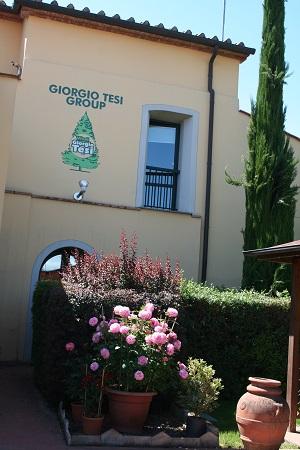 5_Giorgio Tesi Group